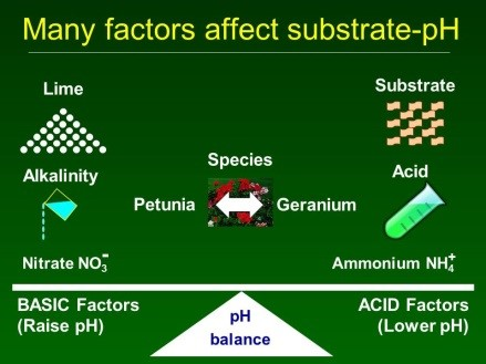 Many factors affect substrate-pH