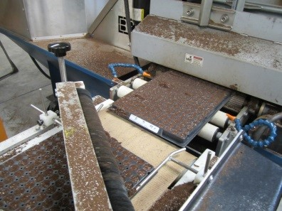 Machine filling trays with compost